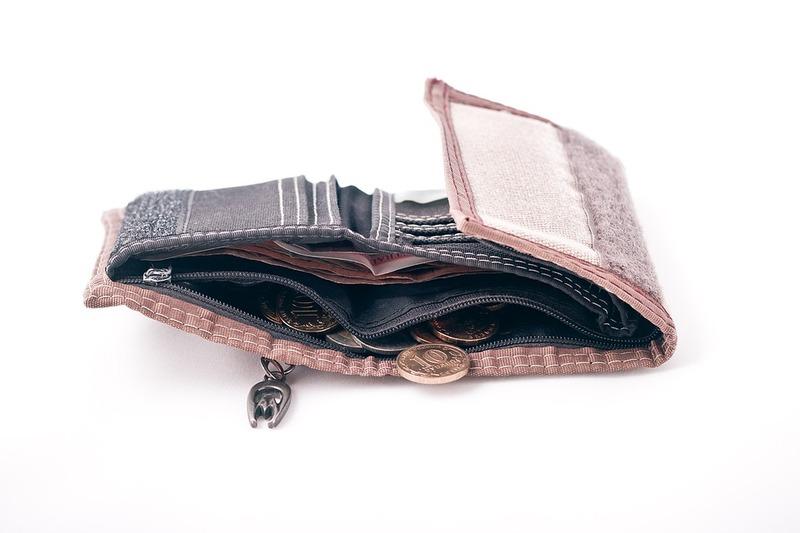 кошелек, рубли, зарплата учителей