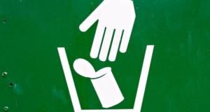 В Мосгордуме предлагают ввести в школьную программу предмет «экология»