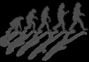 Изъятие теории эволюции из школьных программ является шагом назад