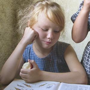 Секретное средство, как научить читать даже Буратино