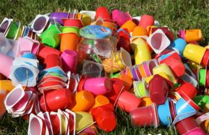 Как вальдорфская школа делает родителей более «экологичными»