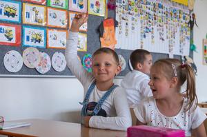 Работа с ребёнком задержкой психического развития: опыт учителя