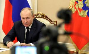 Путину не понравилась характеристика «элитарный» по отношению к школе