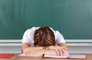 Российские школы проигонорировали письмо Минпросвещения о сокращении отчетности