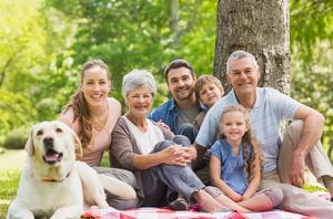 Вкурс обществознания включили тему семьеведения