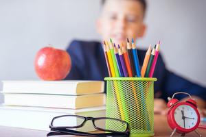 Вшколах утвержден новый порядок образовательной деятельности