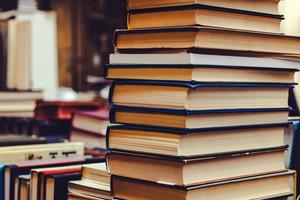 Новые образовательные стандарты утвердят вближайшее время, заявила Голикова