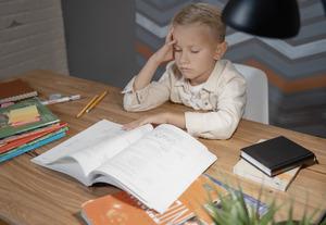 Минпросвещения нашло «серьезные проблемы» вшкольных программах поистории